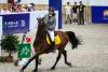 Националното първенство на Китай по конен спорт