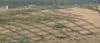 Хилядолетната пустиня Му Уз се превръща в оазис